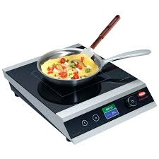 china induction range with digital temperature controls double countertop avantco ic1800 cooker