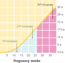 Pregnancy Weight Gain Week By Week Chart Weight Gain Pregnancy Weight Gain Week By Week