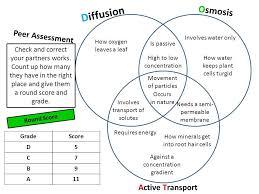 Venn Diagram For Osmosis And Diffusion Osmosis And Diffusion Venn Diagram