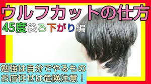 ウィッグで解説 ウルフカットやり方女性人気のミディアム髪型点と線