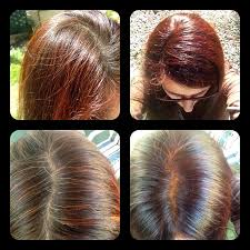 Light Brown Henna Hair Dye Dark Red Henna Before After On Dark Brown Hair With Some