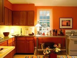 Dishwasher Rack Coating Home Depot Kitchen Cabinets Plastic Coating Kitchen Cabinets Plastic Plastic 69