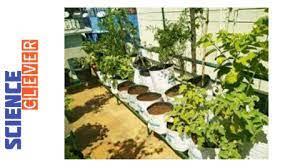 rooftop gardening subsidy scheme 2021