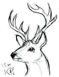 Easy Drawing Deer Head At Paintingvalley Com Explore