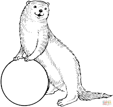 Small Picture Otters coloring pages Free Coloring Pages