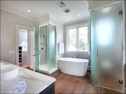 bathroom windows inside shower. Bathroom Windows Inside Shower Black Faucet Design Ideas Bright Elegant White Color Themed Glass Bathtub On Center Window