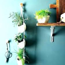 plant hangers home depot wall mount hanger mounted plants hanging outdoor indoor wall plant