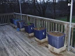 Kitchen Garden Trough Kitchen Garden Trough For Trees Kitchen Garden Trough Planter