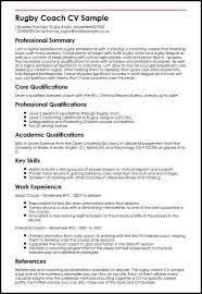 Cv Help Key Skills View Professional Cv