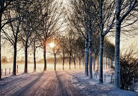 File:Winter Wonderland (part 2) (6537752463).jpg - Wikimedia Commons