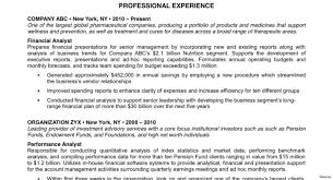 Executive Resume Sample Of References For Resume Executive Summary Format Example 75
