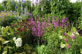 Small Picture Cottage Garden Design Ideas Australia Garden Post