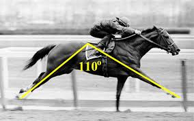 Horse Speed Index Chart Somax Sports Secretariats Big Stride Angle
