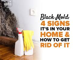 black mold 4 signs it s in your home how to get rid of it