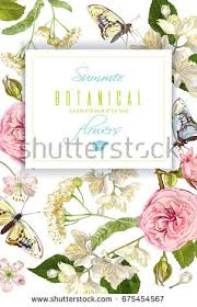 Small Picture Vector Realistic Illustration Linden Branch Butterfly Stock Vector