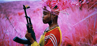 Pink Landscape Richard Mosse