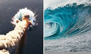 A tsunami is a large sea wave caused by the displacement of a large volume of water. Asteroid Tsunami Rock Heading To Earth Could Create 185ft Wave In Major Disaster Science News Express Co Uk