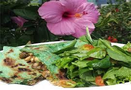 wai nursery and garden center in kaneohe hi at restaurant com