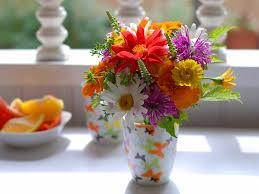 nature beauty flower beautiful rose daisy wallpaper 1600x1200 827323 wallpaperup