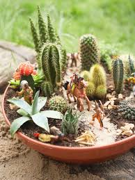 how to plant a garden. Cowboys And Indians Container Garden How To Plant A