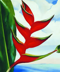heliconia s crab s claw ginger 1939 by georgia o keeffe image courtesy of