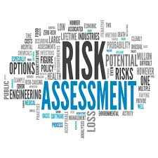 Image result for it risk assessment
