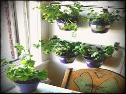 indoor vertical garden kit best of attractive herb ideas a home decorations insight