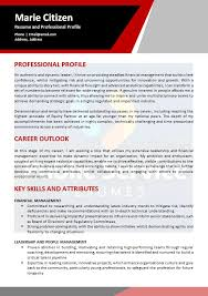 Public Service Senior Executive Resume » Public Service Resume Writers
