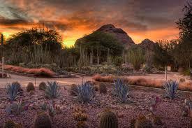 ottosen entry garden sunset adam rodriguez 67988a6b 043d 4865 9142410ce7545109 1b345b45 50eb 4980 89147967dca8f285 jpg