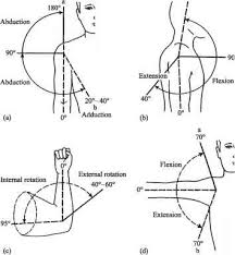 Joint Rom Chart Head Circumference Guws Medical