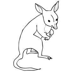 Small Picture Bandicoot coloring pages Free Coloring Pages