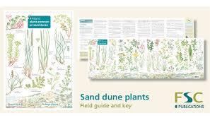 Fsc Fold Out Id Chart Sand Dune Plants Identification Chart