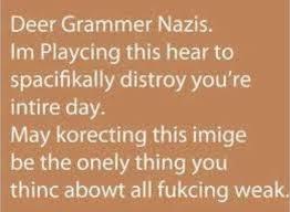 Grammar Quotes Fascinating Grammar Nazi Funny Quotes Dump A Day