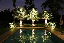 view in gallery landscaping lighting on poolside palm trees