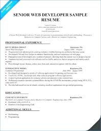 Web Developer Cv Template Resume Example