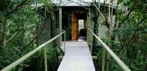 Treehouse Restaurant In Monteverde The World Is A BookTreehouse Costa Rica Monteverde