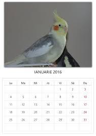 Calendar ianuarie 2017 romanesc