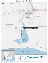 Cameron School Of Business Flow Chart Sempra Partners Settle With Cameron Lng Contractors 2017