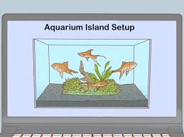 Homemade Tip Up Designs How To Make Your Fish Tank Look Professionally Designed 13