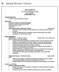 40 Finance Resumes In PDF Free Premium Templates New Resume For Work