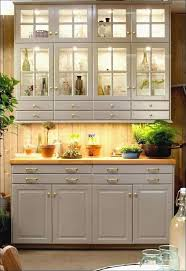 18 Inch Deep Base Kitchen Cabinets Fresh Popular Interior  Cabinet Club Really Inch Base Cabinet59