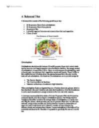 a balanced diet a level physical education sport coaching  page 1 zoom in