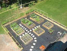 Small Picture Design Vegetable Garden Markcastroco