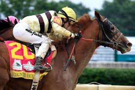Country House Out Of Preakness Stakes In Triple Crown Debacle