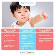 Two Year Old Development Chart 16 Month Old Development And Milestones Is Your Tot On