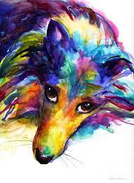custom pet paintings colorful sheltie dog portrait by svetlana novikova