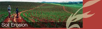 soil erosion control soil erosion has been a major issue in the past and will become an even greater issue in the future as population growth continues to expand and land