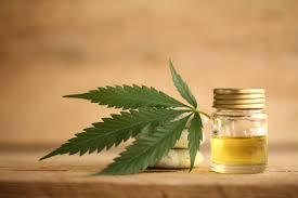 Cannabis Short Interest Higher In July Shortsight Com