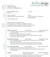 Resume Profiles Examples Profile On Resume Skilled Profile Resume