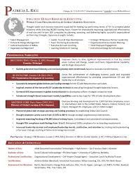 Resume Networking Resumes Executive Resume Services